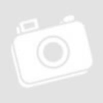 """RC4WD Pro10 1.9"""" Acél Beadlock felni, ezüst (4db)"""